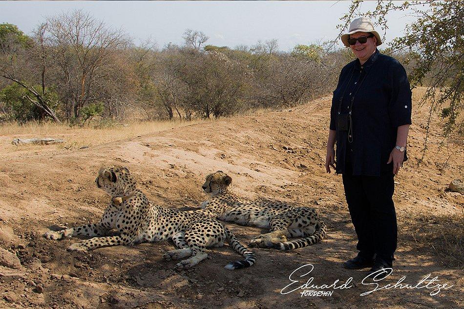 suedafrika-73-950.jpg