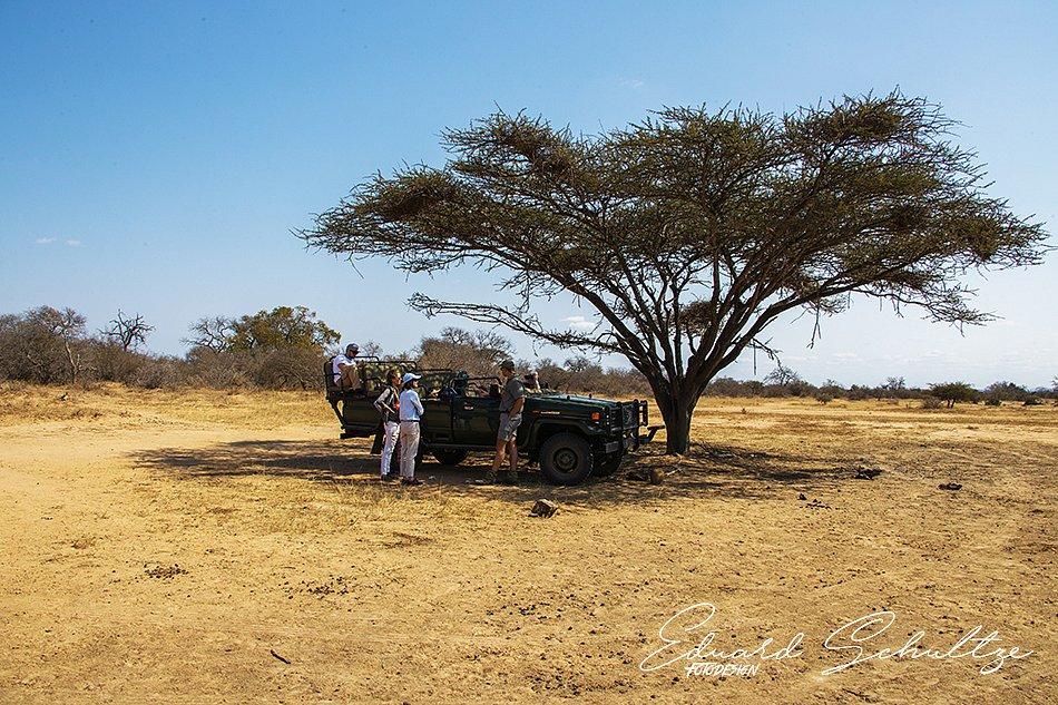 suedafrika-81-950.jpg